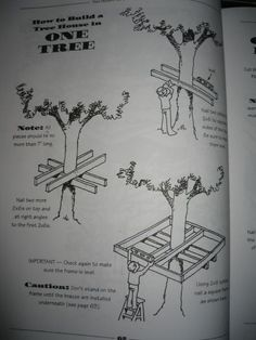 Picture of How to plan a tree house