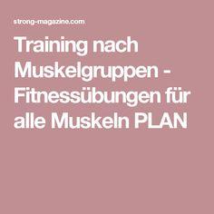 Training nach Muskelgruppen - Fitnessübungen für alle Muskeln PLAN