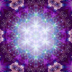purelikeheaven:    Flower of Life