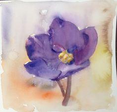 Watercolor african violet