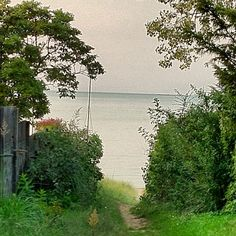 The path to the beach. Lake Michigan