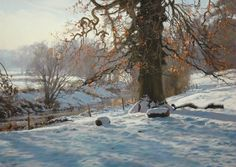 Peter Barker solo show