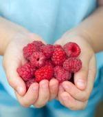 13 Foods To Grow For Antioxidants