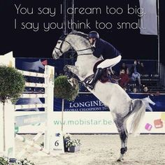 /dream/big/ #horsequotes