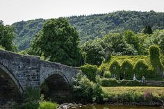 Llanrwst, Wales - Ivy Covered Tea Rooms | Flickr - Photo Sharing! By Dominic Scott Photography