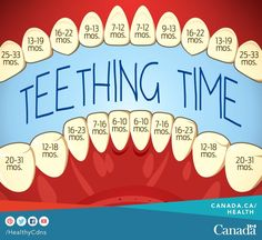 Excellent teeting chart - when to expect to see those teeth! #babies