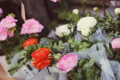 Angelica Blick Angelica Blick, Table Decorations, Flowers, Plants, Roses, Home Decor, Food, Decoration Home, Pink