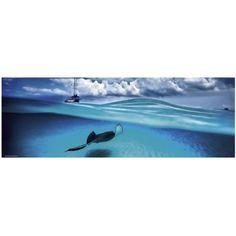 Puzzle 1000 Teile Panorama - Alexander von Humboldt: Stingray Heye-29470 1000 Teile Puzzle Meer und Ozean - Planet'Puzzles