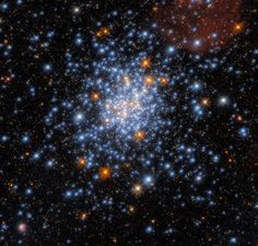 This image taken with the NASA/ESA Hubble Space Telescope depicts the open star cluster NGC 330, which lies around 180,000 light-years away inside the Small Magellanic Cloud. Theme Tattoo, Hubble Images, Fireworks Show, Star Show, Hubble Space Telescope, Telescope Images, Star Cluster, Pictures Of The Week, Image Of The Day