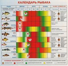 http://plentiful-kill.ru Что же такое календарь рыболова? Рыболов использует календарь для наблюдения за поведением рыбы. Хочу заметить, что для рыболова это так же неотъемлемо, как план эвакуации во...