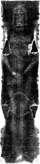 shroud-of-turin-jesus