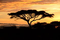Sonnenuntergang - Sundowners