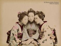 Kusakabe Kimbei, Three young maiko, ca. 1890. #japan #photography #vintage #handcoloured #geisha #maiko #women