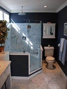 This shape could replace our spa bathtub and then you could put storage in shower corner to make it more spacious!