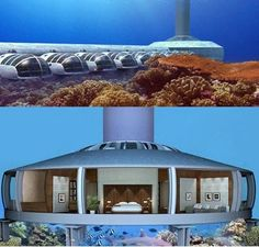 Underwater Swellings:  H20me and The Poseidon Resort...I will SO be visiting this place!!!!