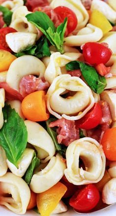 Tortellini Caprese Salad ~ Tortellini, grape tomatoes, mozzarella, prosciutto and fresh basil tossed in a red wine vinaigrette for the greatest picnic and potluck salad on earth.