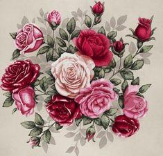 розы - Схемы вышивки - lenaknigolub - Авторы - Портал «Вышивка крестом»