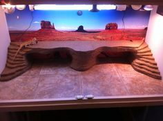 Double ramp with basking platform for the beardie