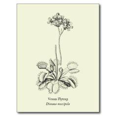 img dessins de fleurs violette projet pinterest dessins de dessin et tatouages. Black Bedroom Furniture Sets. Home Design Ideas