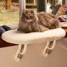 """Archie & Oscar™ 11"""" Gabby Cat Perch & Reviews   Wayfair Cat Window Hammock, Heated Cat Bed, Cat Wall Shelves, Cat Perch, Cat Towers, Cat Condo, Outdoor Cats, Cat Tree, Cat Furniture"""