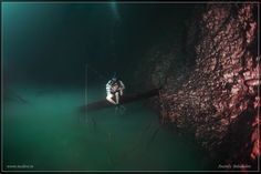 "underwater river in Mexico. The ""river"" is actually a briny mix of salt water and hydrogen sulfide. It's much more dense than regular salt water, so it sinks to the bottom and forms a distinct separation that acts and flows like a river. Underwater World, Fishing Photography, Underwater Photography, Dame Nature, Photoshop, New River, Natural Phenomena, Water Photography, Places"