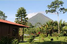 (PHOTO: Hotel Rancho Cerro Azul)  Best bargain hotels in the world (according to TripAdvisor):  9. Hotel Rancho Cerro Azul, La Fortuna de San Carlos, Costa Rica (Hotel Rancho Cerro Azul is found not far from the famous La Fortuna waterfall which plummets 200 feet from the jungle to the pool below. Guests can enjoy their stay in one of the hotel's cabins which are set in beautiful grounds full of wildlife.  Room rates start at £48 per night.)