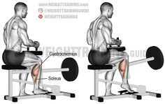 Machine seated one-leg calf raise. A unilateral isolation exercise. Target muscle: Soleus. Synergistic muscle: Gastrocnemius.