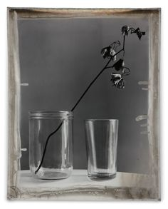 Jeff Cowen :: Nature Morte 10, Silver Print, 2010 / more [+] by this photographer