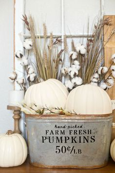 Beautiful DIY Rustic Decoration Ideas for Fall DIY Farmhouse Pumpkin Bucket. Love the farmhouse look for Fall with this simple but elegant pumpkin bucket. You can make your own one in just a few easy steps! Thanksgiving Crafts, Thanksgiving Decorations, Fall Crafts, Seasonal Decor, Diy Crafts, Design Crafts, Halloween Rustique, Farmhouse Halloween, Decoration Christmas