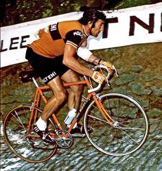 Eddy Merckx Team Faema De Rosa bicycle cotton T-shirt  campagnolo nuovo record b