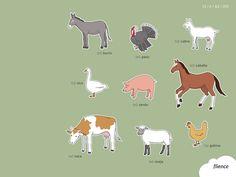 Animals-farm_003_es #ScreenFly #flience #spanish #education #wallpaper #language
