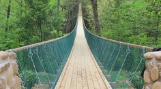 America's longest swinging bridge - Foxfire Mountain, Sevierville, TN. #Sevierville #attractions #fun #family #whattodo #vacation #Tennessee