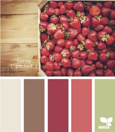 living room colors home-inspiration