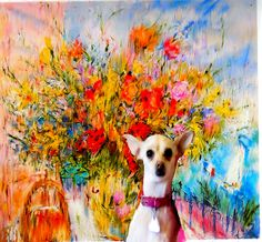 """Cross Between Italian Greyhound and Chihuahua"""