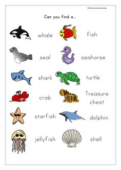 FREEBIE Under the sea themed scavenger hunt printable