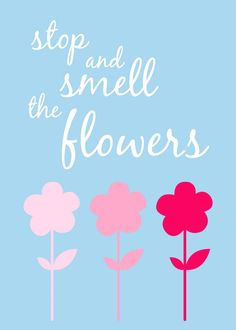 I always say this to my hubby, and yes I do stop to smell the roses.<3    https://www.mythirtyone.com/397975/
