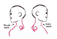 """mellon-splash: """"A mini tutorial on how to draw profiles and attaching the head to the neck. Hope it helps! """""""
