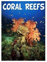 Connections ~ Oceans Unit Study, Lesson Plans, Printables, Lapbooks