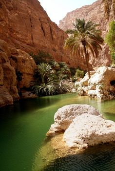 Wadi Shab. A MUST SEE if ever you are in Oman.Beautiful beyond words