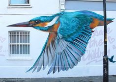 Street Art Bird by Will Vibes in London, England - ART inspiration Murals Street Art, Street Art Utopia, Mural Art, Street Art Graffiti, Wall Mural, Urban Street Art, 3d Street Art, Amazing Street Art, Street Artists