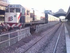 ferrocarriles del sud: UNA LUZ DE ESPERANZA PARA SUMAR TRENES DE BAHÍA A ...