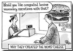WHY THEY CREATED THE WORD CHEESE: ~ would you like congealed bovine mammary secretions with that? - #truthbetold #vegan