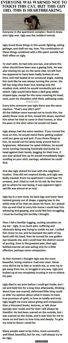 The story of Ugly the Cat is one of the most heart-wrenching things I've ever read. This cat's love was unconditional, and I hope it's a lesson to all of us to treat animals with kindness, no matter how they look.