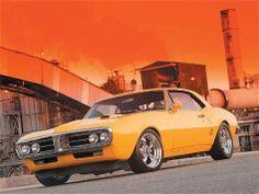1967 Firebird - Muscel Car