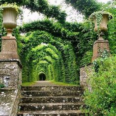 @annieuechtritz #birrcastle #ireland #gardensoftheworld #classicgarden