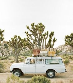 One day we will travel like this throughout America. Joshua Tree National Park road trip!