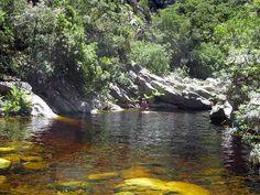 Marloth Nature Reserve near Swellendam, Western Cape. South Africa.