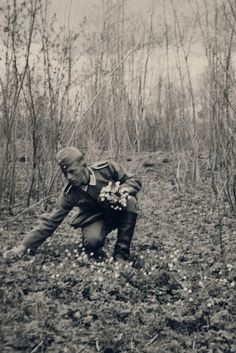 An old soldier picking flowers where a fallen comrade was buried.