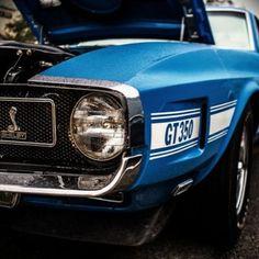Hot Sky Blue GT 350! Twit Twwoo