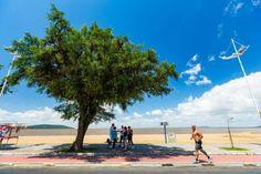 Chuva volta ao Rio Grande do Sul  a partir de quarta-feira Omar Freitas/Agencia RBS Charqueadas, RS e Brasil História historiasbrasil  history brazil http://historiasbrasil.com.br/